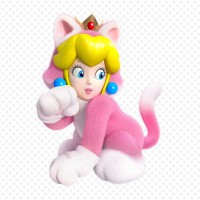 Super-Mario-3D-World_2013_10-25-13_011