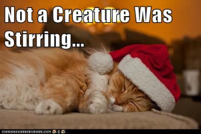 Sincerity...I haz it. Merry Christmas to all, and to all a good night. :)