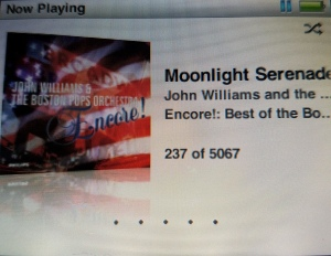 237moonlightserenade
